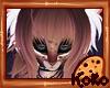 🍪 Kokolat Hair V3
