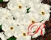 White FlowerGirl Basket