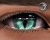 Feline Chesh Eyes M