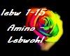 Amino - Lebwohl