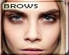 . Cara Eye Brows