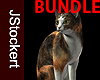 AP Calico Cat BUNDLE
