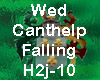 Wed_Can'tHelpFalling