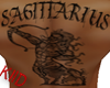 SAGITARIUS MALE BACK TAT