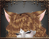 [Ry] Ginger ears
