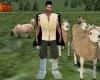 pastoraio sardo