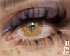Halo Fire. eyes