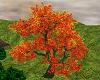 Hunt Lodge Tree 1
