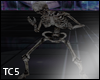 skeleton twerking