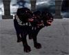 Guardian of Undead PET