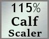115% Calves Scale MA