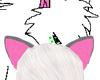 Silverwind Ears