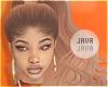 J | Elinor carrot