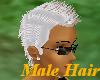 (A) Male Plat Fauhawk