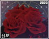 Scorpio | Roses