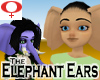 Elephant Ears -Womens