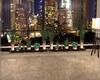 Floor&Wall Plants