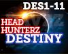 HS - Destiny