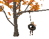 Autumn Tire Swing