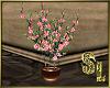*Plant Flowers