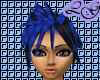 (LG) Advent Blueberry