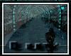 [R] BLKs WINTER PARK