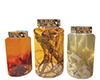 Home Decor  Jars