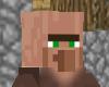Minecraft Villager Furni