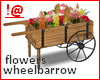 !@ Flowers wheelbarrow