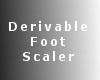 SL Derivable Foot Scaler