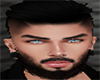Head and Beard Realistic