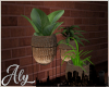 Loft Living Plant Group