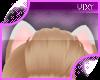 ;Corga Ears