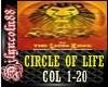 ~CIRCLE OF LIFE(LIONK)~