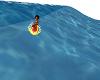 {DD}Surfin