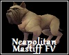 Neapolitan Mastiff FV