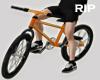R. Bike Avi