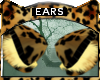 Bengal * Ears V2
