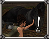~E- W.E. Stable Horse 1
