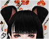 💕Dogge Ears