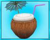 Coconut Beach Chair