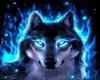 ~JSW~Native/wolf club 2