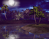 Tropical Night Island