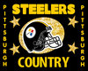 Steelers Country Flag