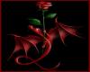 Red Rose Dragon