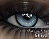 S. Avene Universe