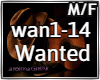 Wanted-Hunter Hayes