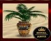 Egypt Vase Plant