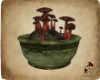 D. SR Mushroom Pot V3