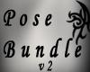 [P] Pose Bundle v2